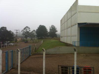 Terreno, Floresta, Nova Santa Rita (CM4437) - Foto 14