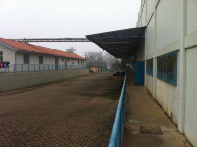 Terreno, Floresta, Nova Santa Rita (CM4437) - Foto 4